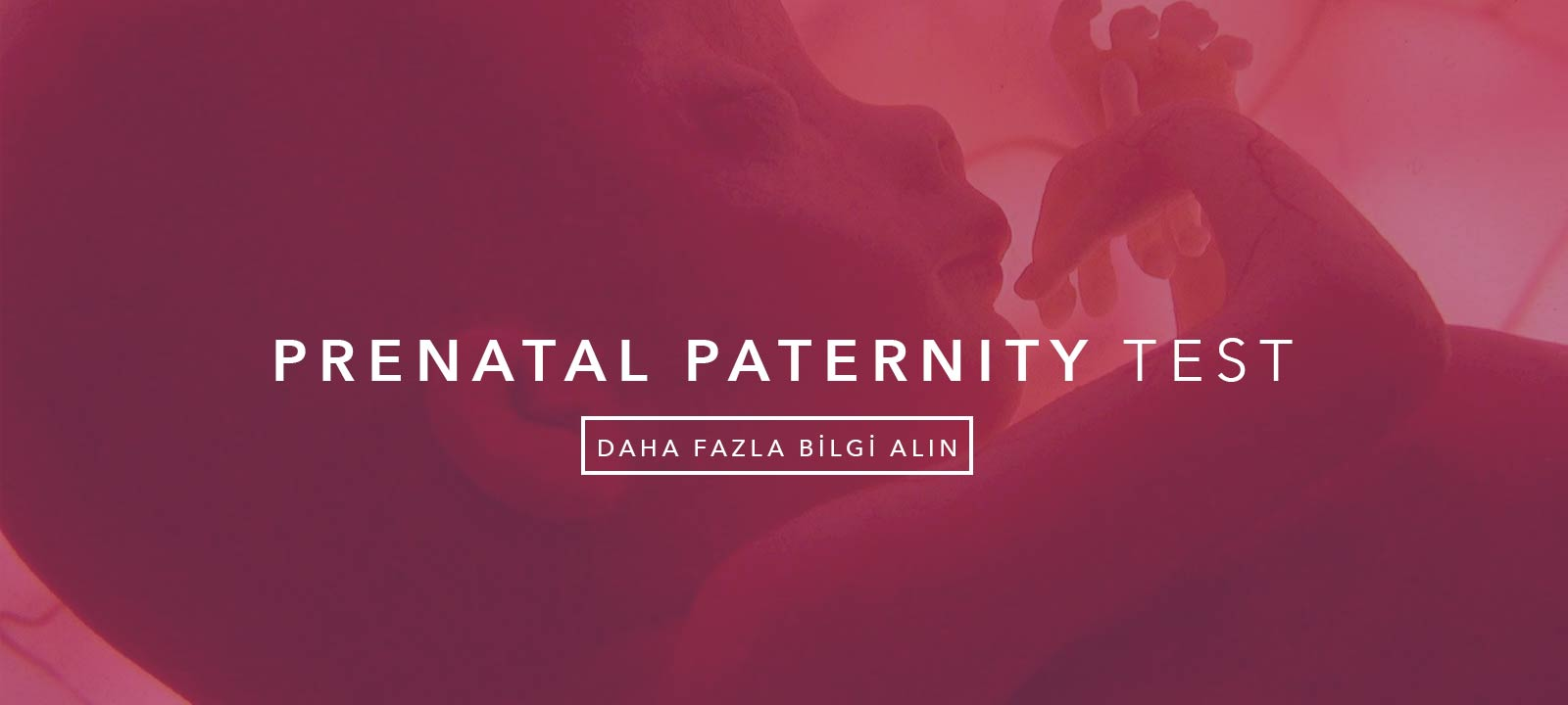 Prenatal Paternity Test